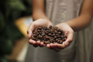コーヒー豆を持つ